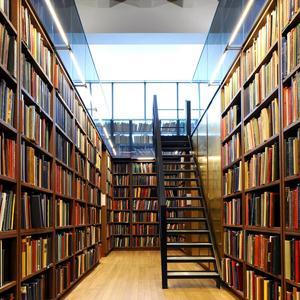 Библиотеки Пласта