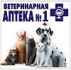 Ветеринарные аптеки в Пласте